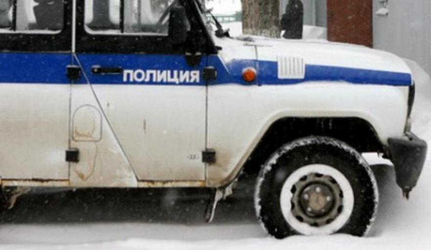 уаз полиции зима