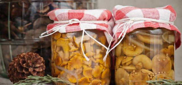 Как правильно засолить грибы