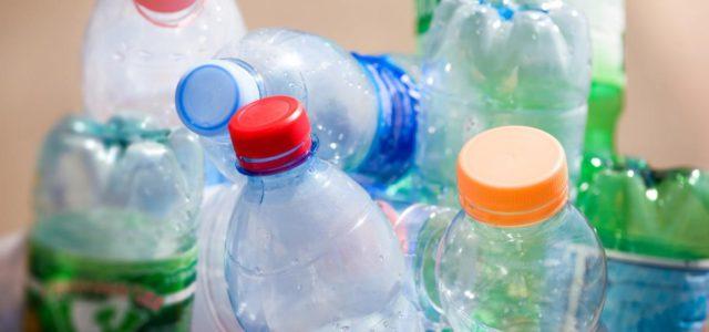 Как пластиковые бутылки влияют на способность к размножению