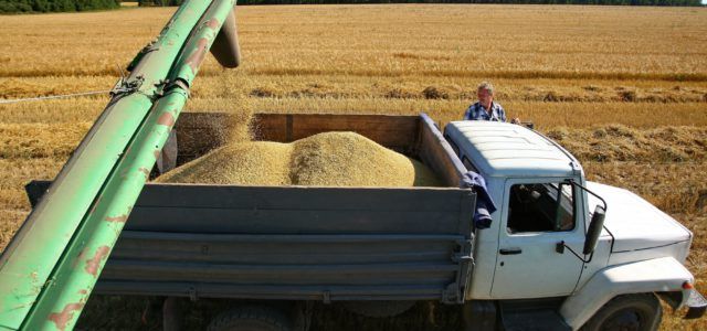 Отчет об уборке урожая в Кировской области