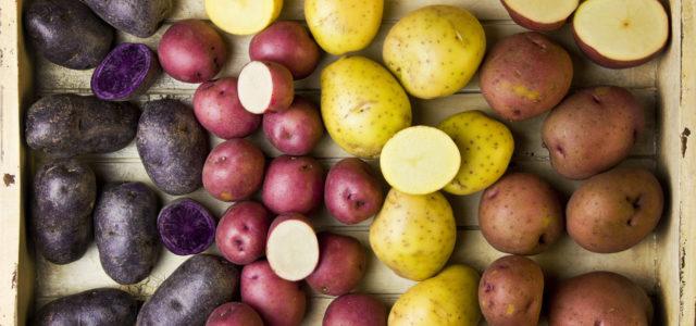 сорта картошки считаются самыми вкусными