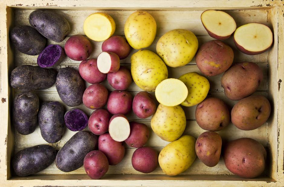 Какие сорта картошки считаются самыми вкусными? Виды сортов