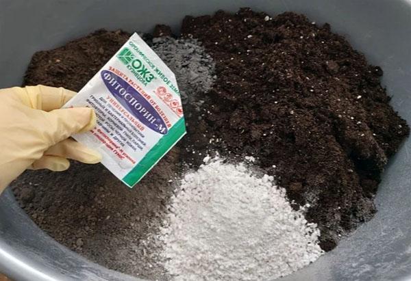 Как готовлю землю для выращивания рассады
