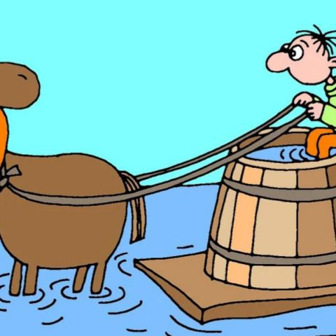 Пословица На обиженных воду возят