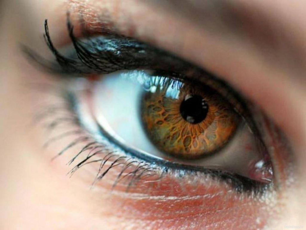 Почему люди с карими глазами являются уникальными