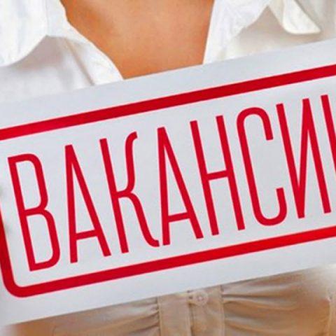 Самые высокооплачиваемые вакансии июля в Кировской области