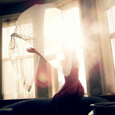 Как солнечный свет воздействует на половое поведение
